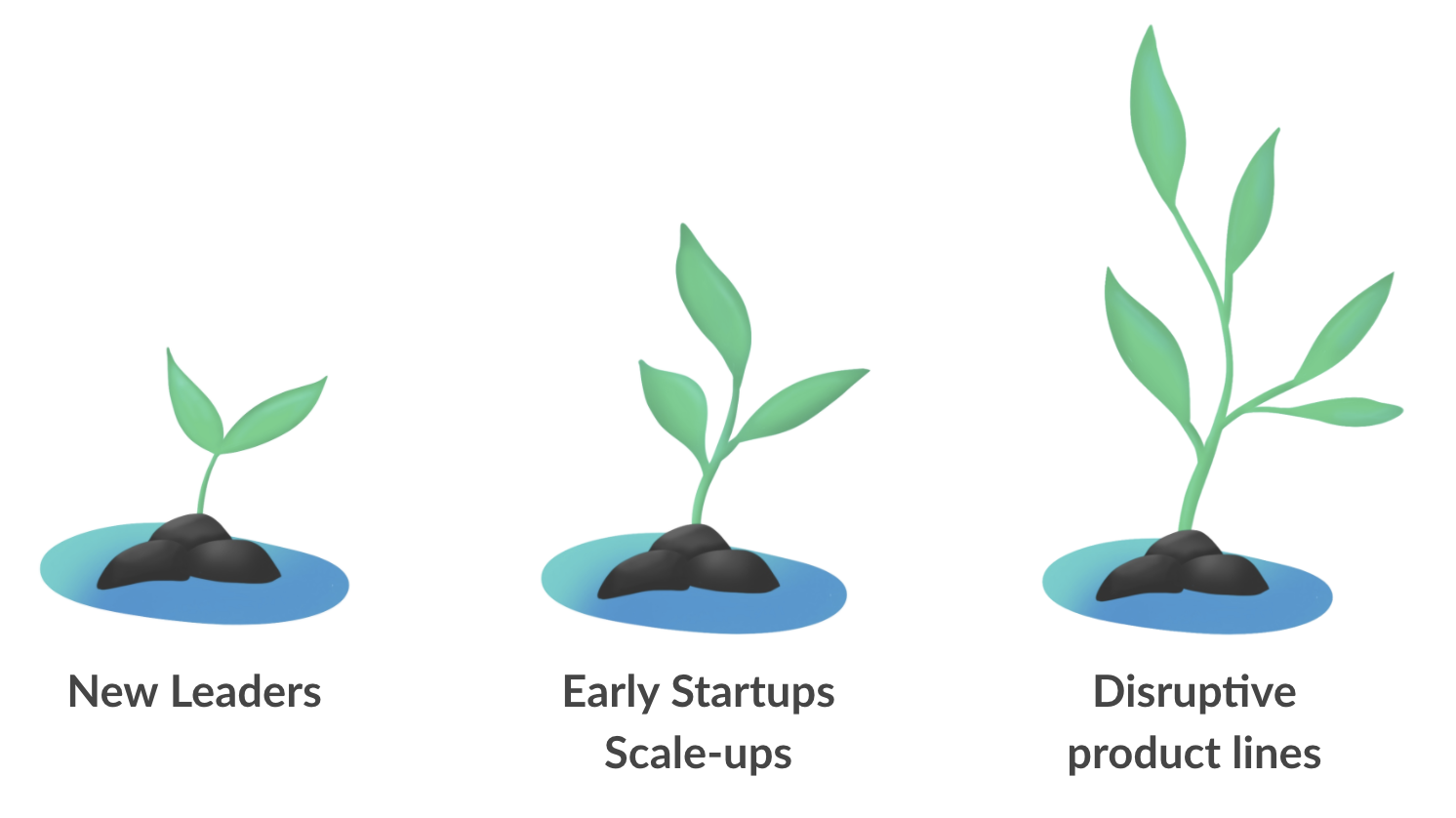 Quick Wins Framework benefits everyone: new leaders, early startups, disruptive product lines