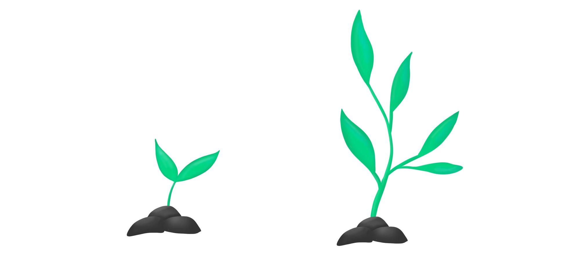 Organic Portfolio Growth