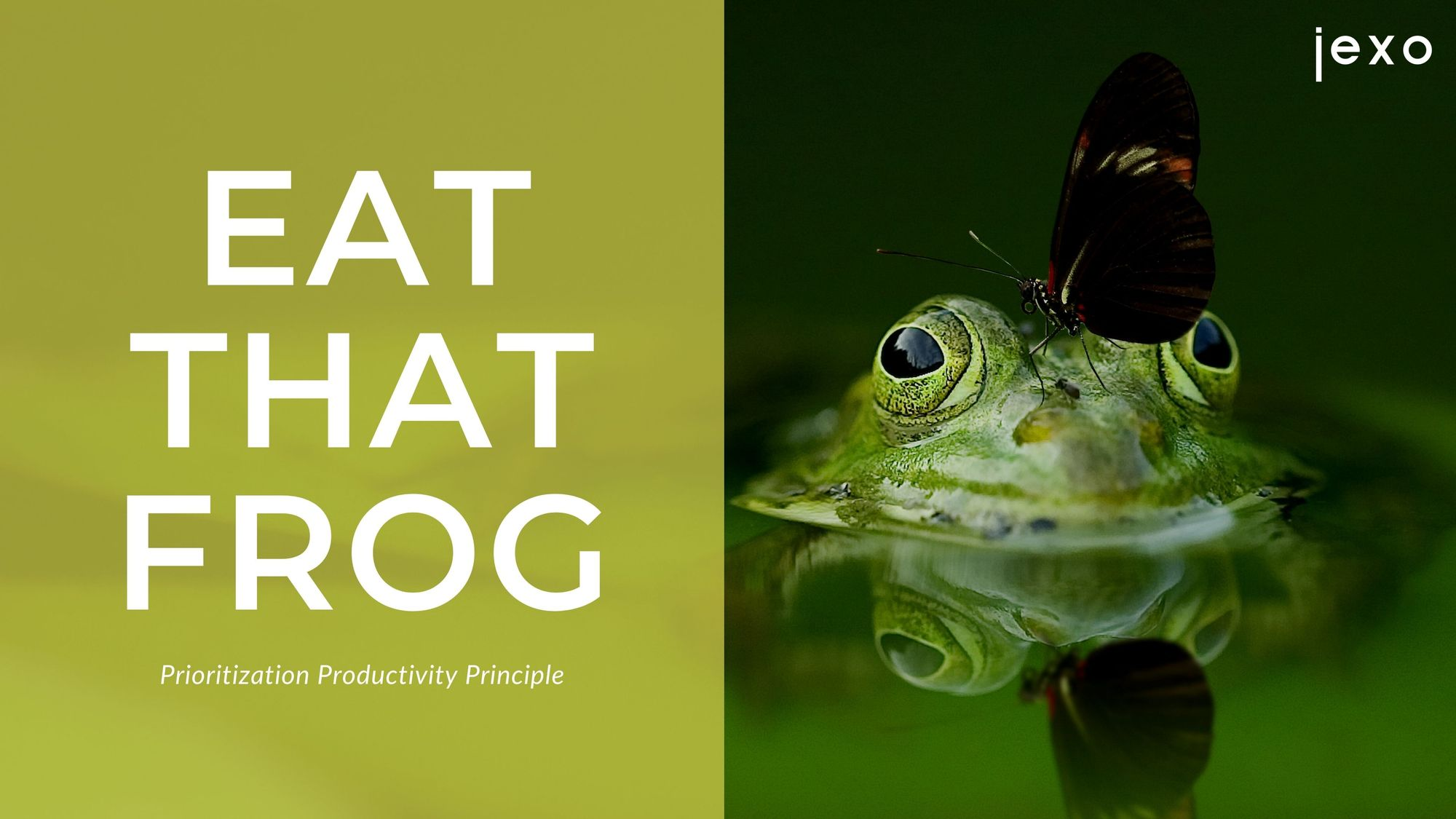 Prioritization productivity principle: eat that frog